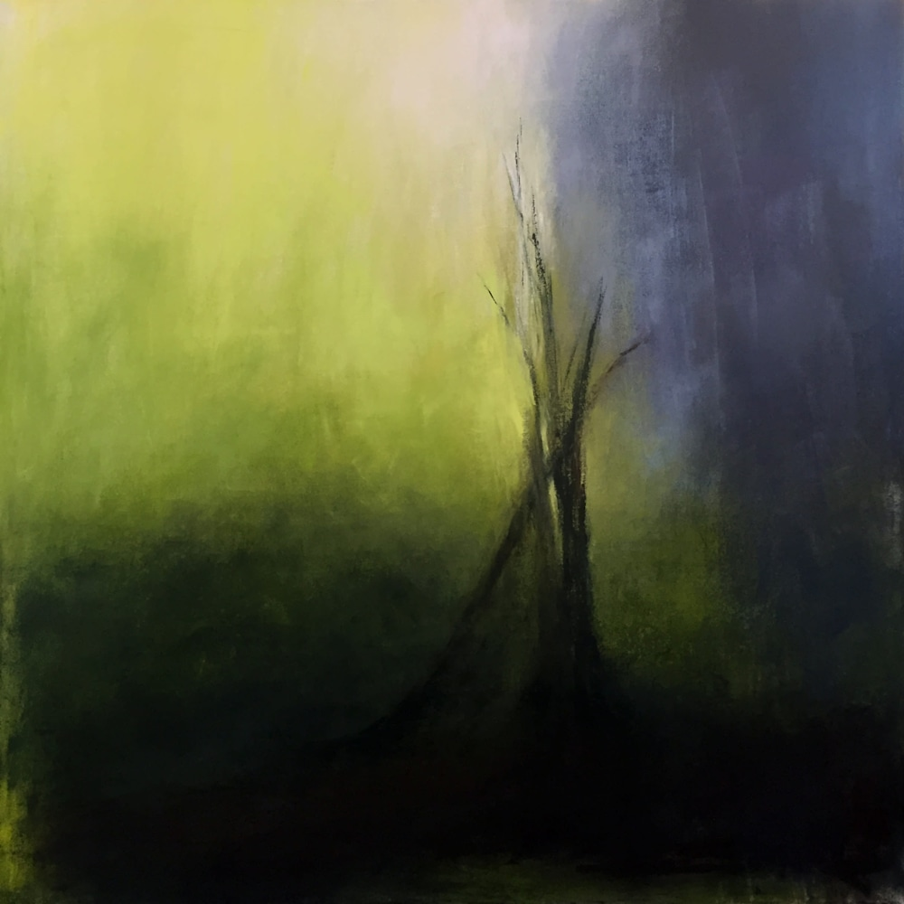 dawn boyer yellowstone trees higher res