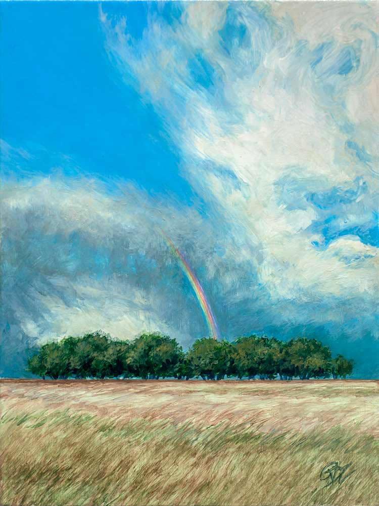 LR RainbowIllusion 6x8