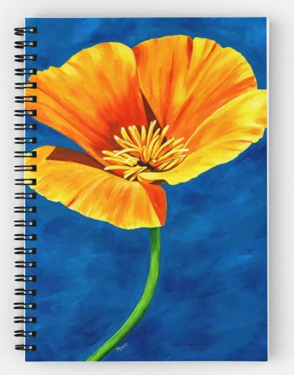 Radiance Notebook