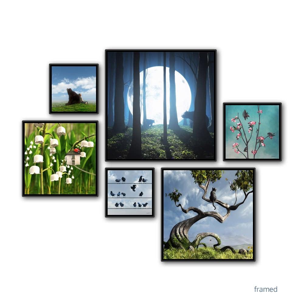Animals framed