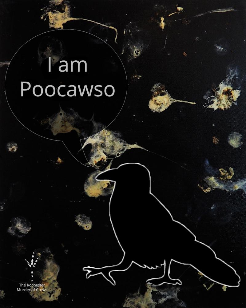 Poocawso