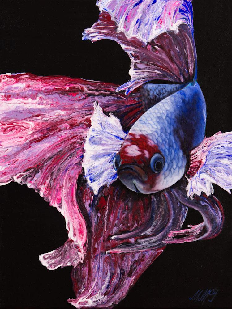 Phoenix Betta Fish 12x16 Web
