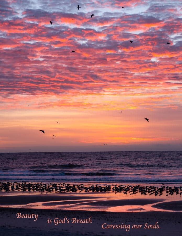 Beauty Sunrise Sea DSC6779Q Card