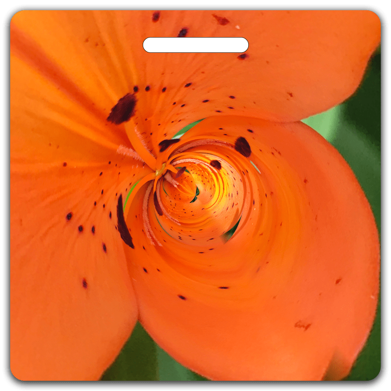 Asiatic Lily Bag Tag