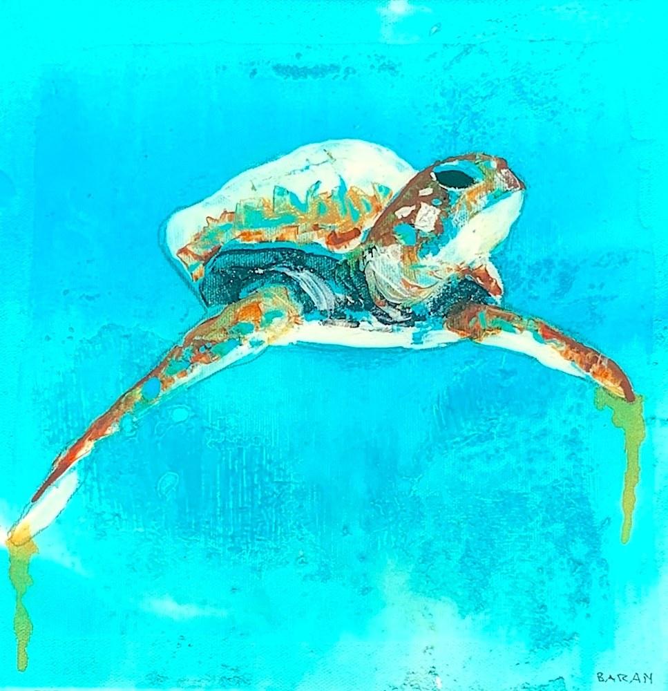 John Baran   Maui Turtle