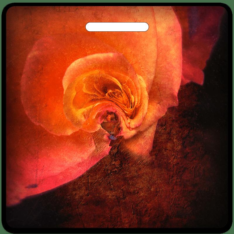 Rose In Orange Bag Tag