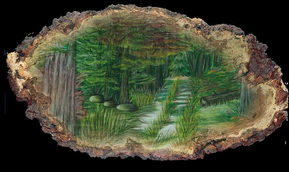 Deep Woods Trail Pform