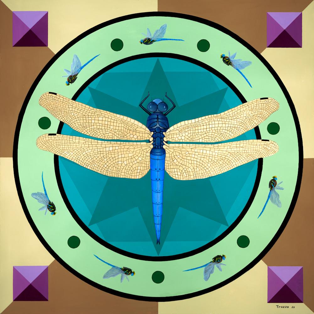 Dragonfly Mandala ASF 4 72