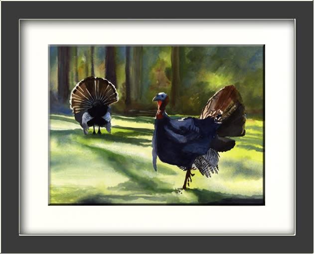 Two Turkeys Framed