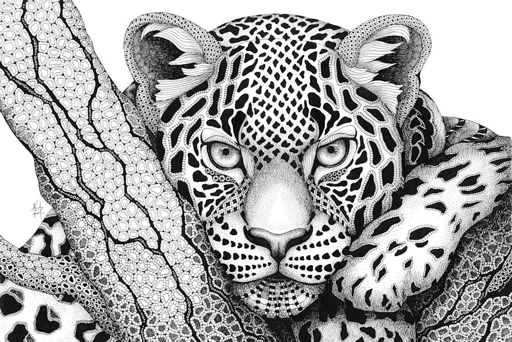 leopard  Gotcha!