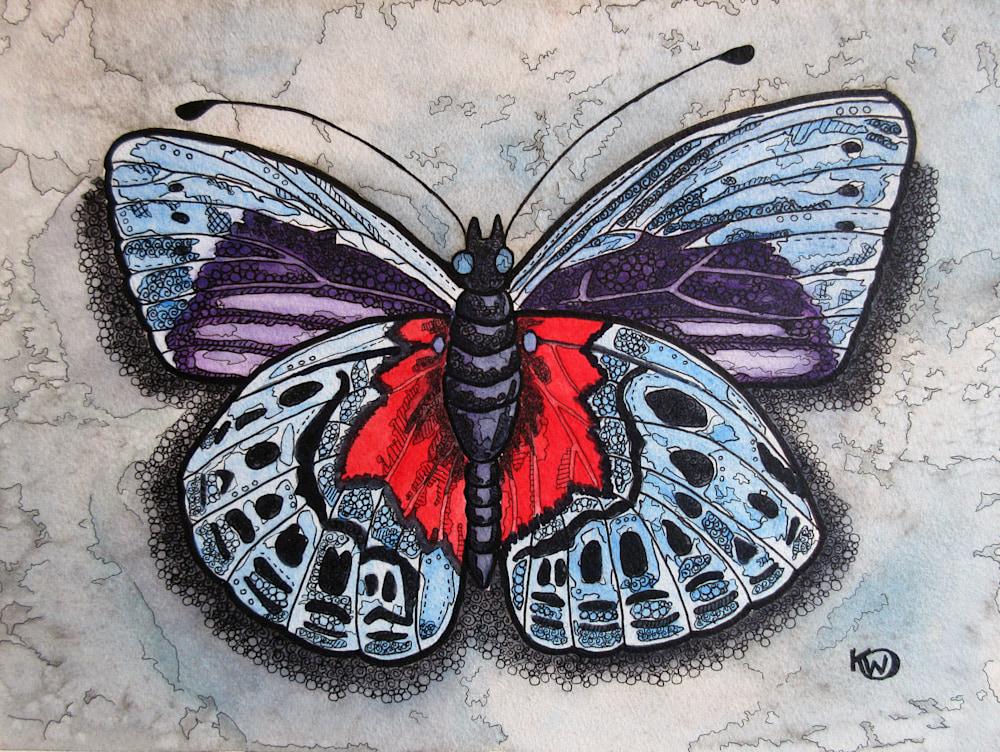BlueRedButterfly