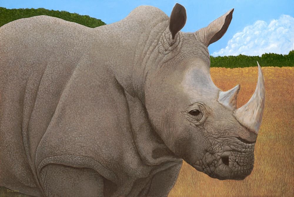 Rhino ASF 150