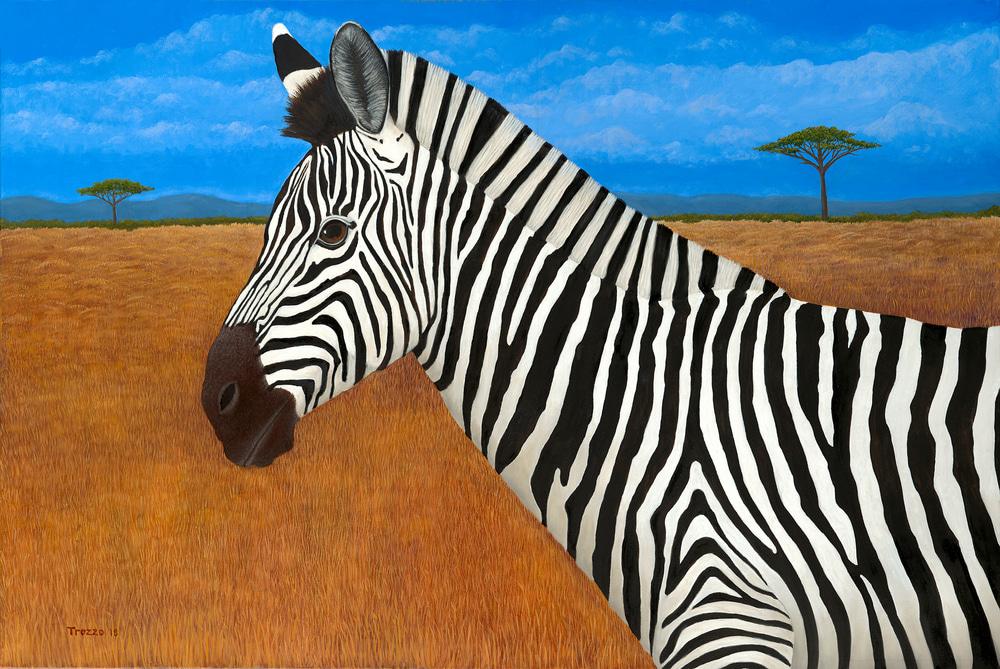 Zebra med res