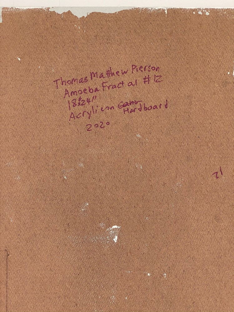 4 4 20 thomas matthew pierson amoeba fractal #12 18x24 acrylic on hardboard 2020 detail 9