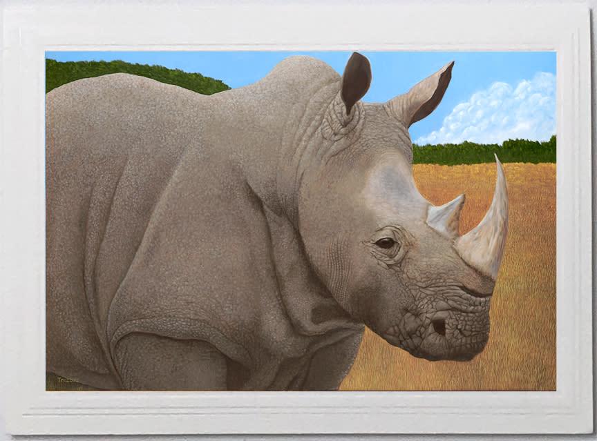 Rhino card asf