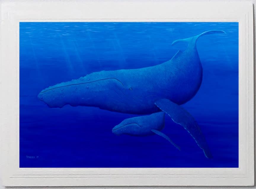 Whale card asf