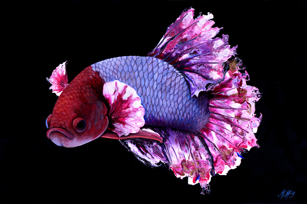 Cherry Blossom Betta Full 2