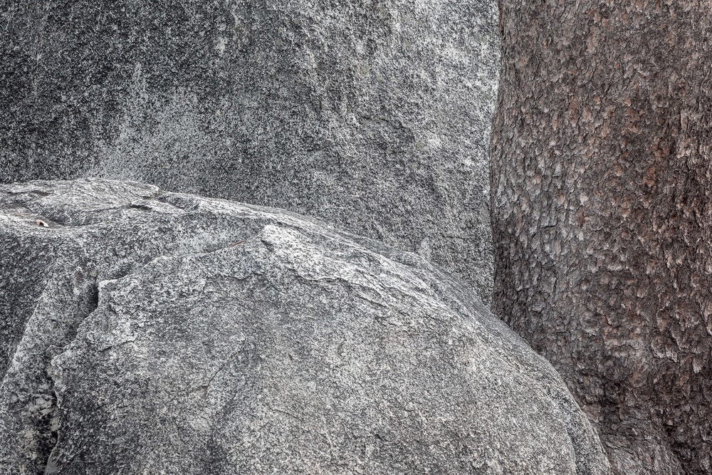 Boulders and Pine