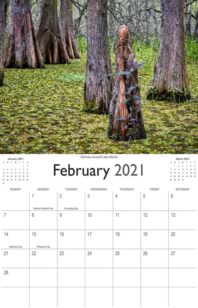 2021 Bayou Paradise February