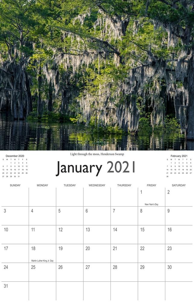 2021 Bayou Paradise January