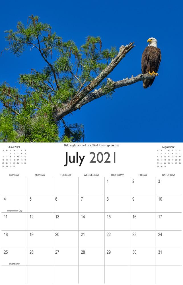 2021 Bayou Paradise July