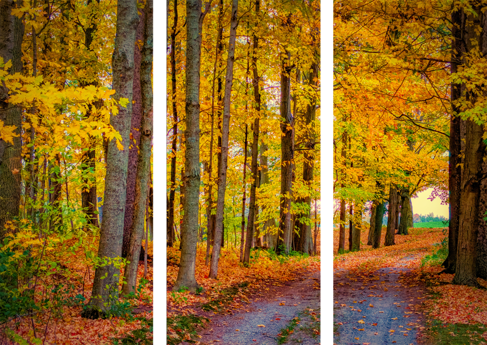 Fall Driveway preview