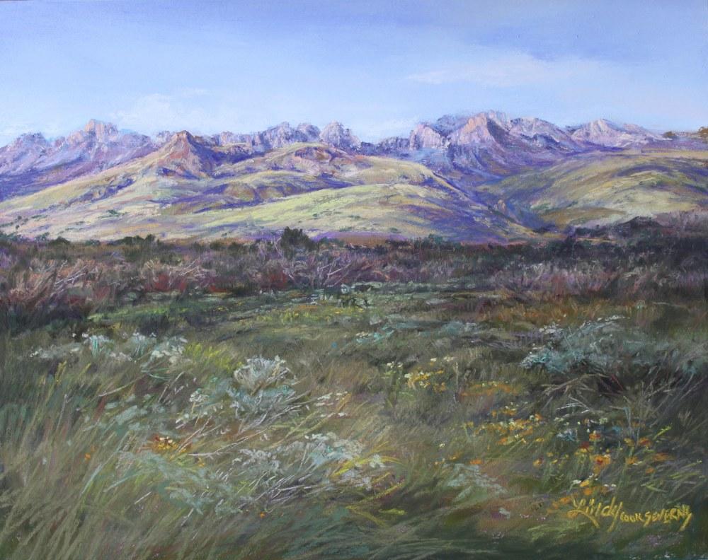 4B14 In Softness Davis Mt Summer 8x10 Lindy C Severns pastel Edit