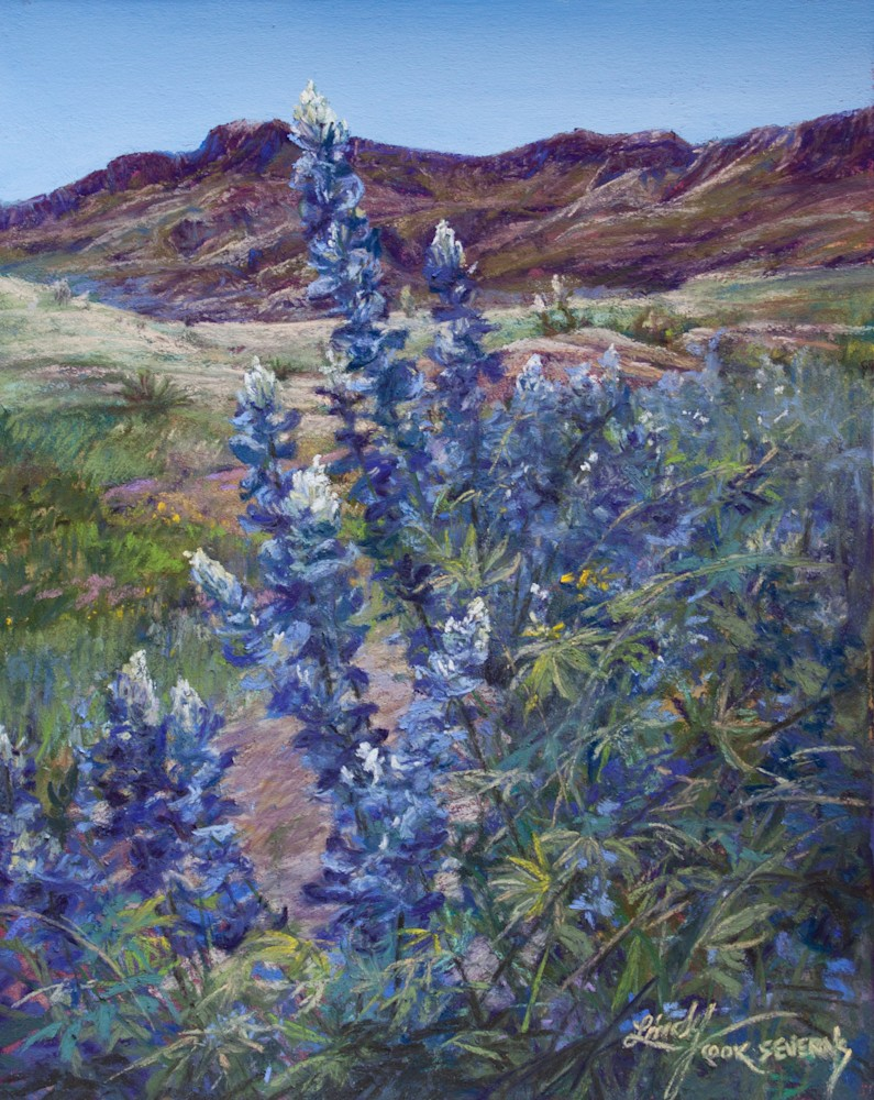 7D15 Tall Texas Blues 10x8 pastel by Lindy C Severns Edit