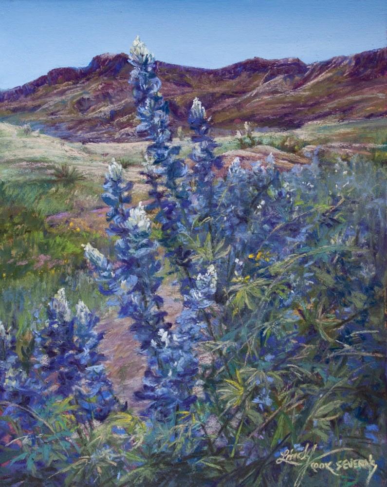 Tall Texas Blues 10x8 pastel by Lindy C Severns 980x Edit