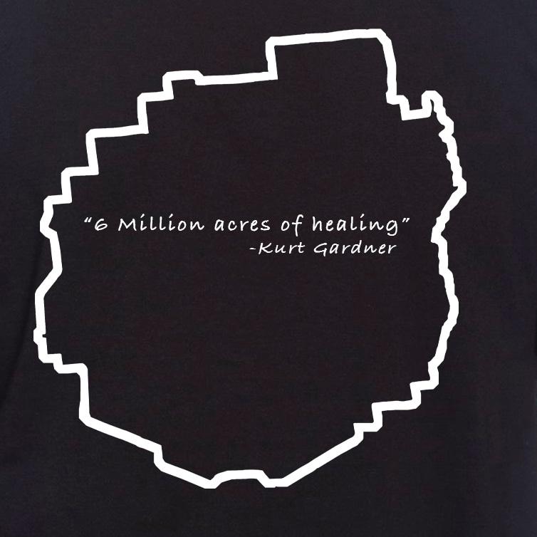 Black t shirt Healing1