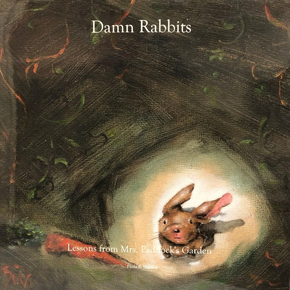 Damn Rabbits cover