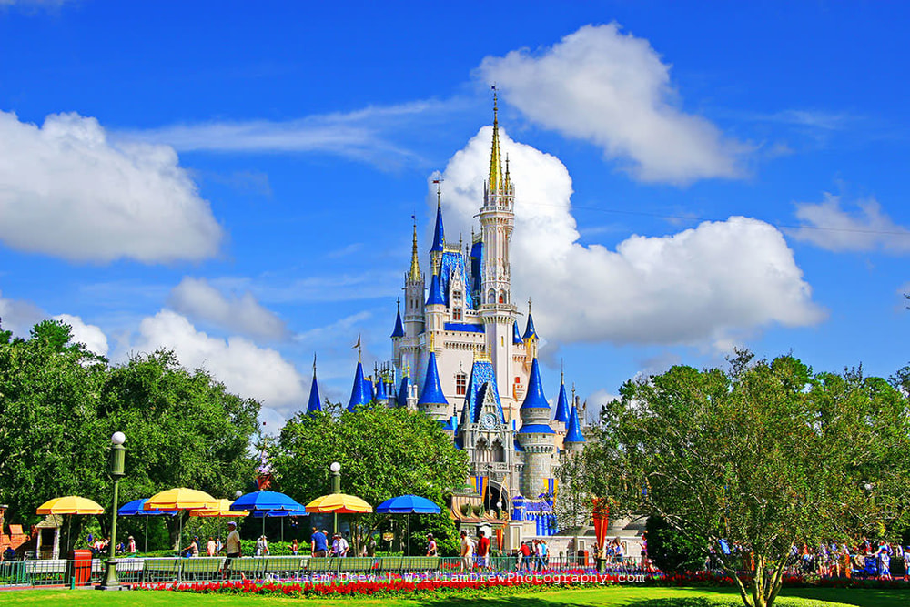 Magic Kingdom sm