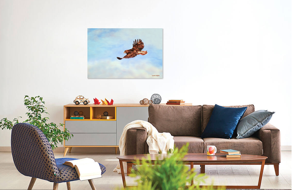 Red Tail Hawk over couch