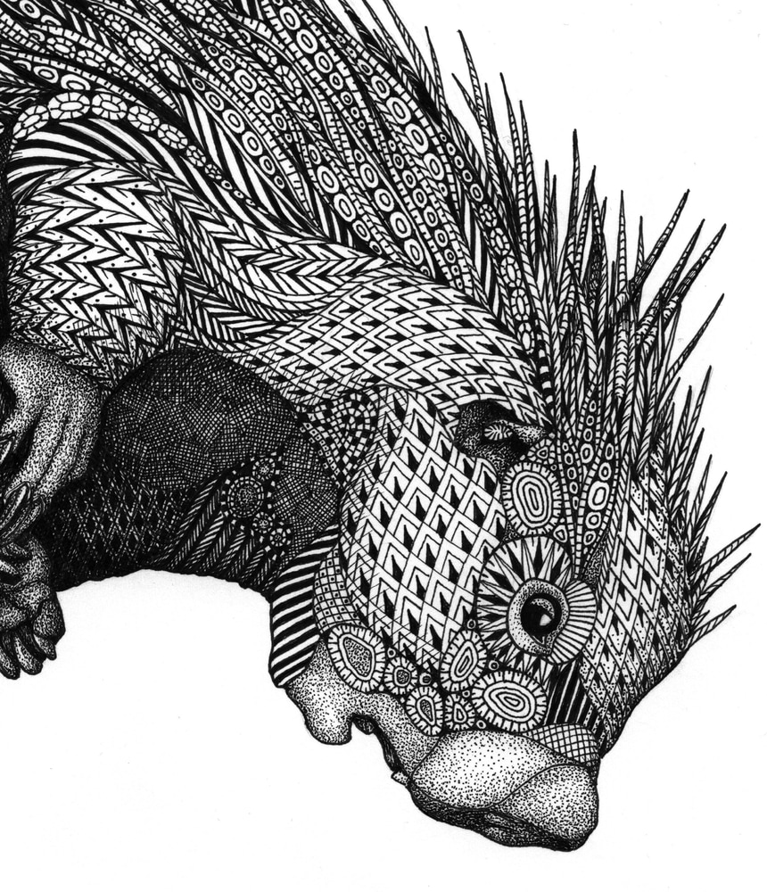 porcupine (Is This Far Enough? ) detail