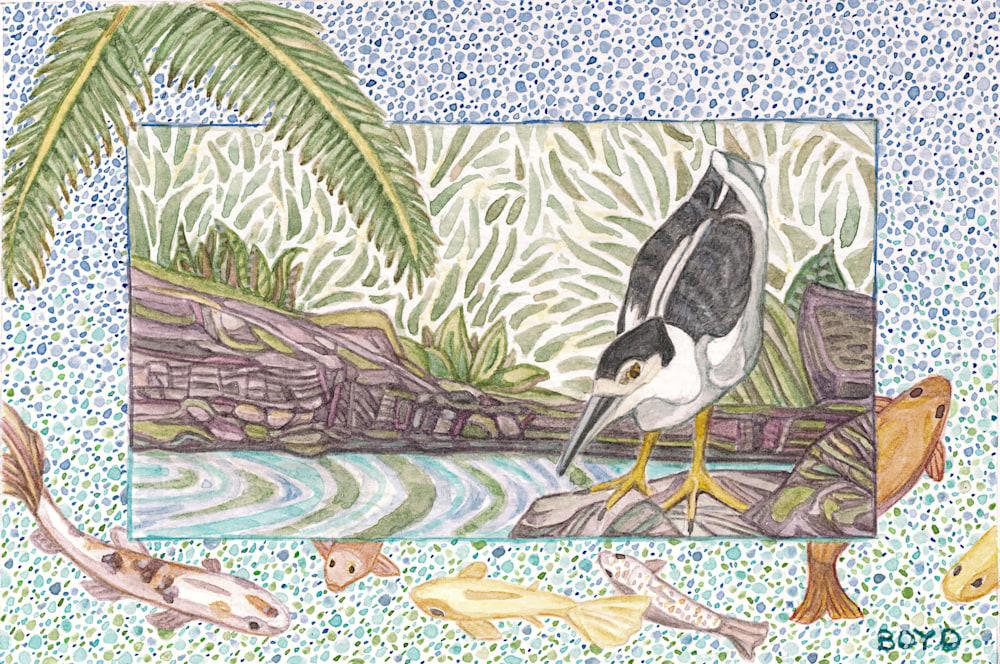 Night Heron cropped