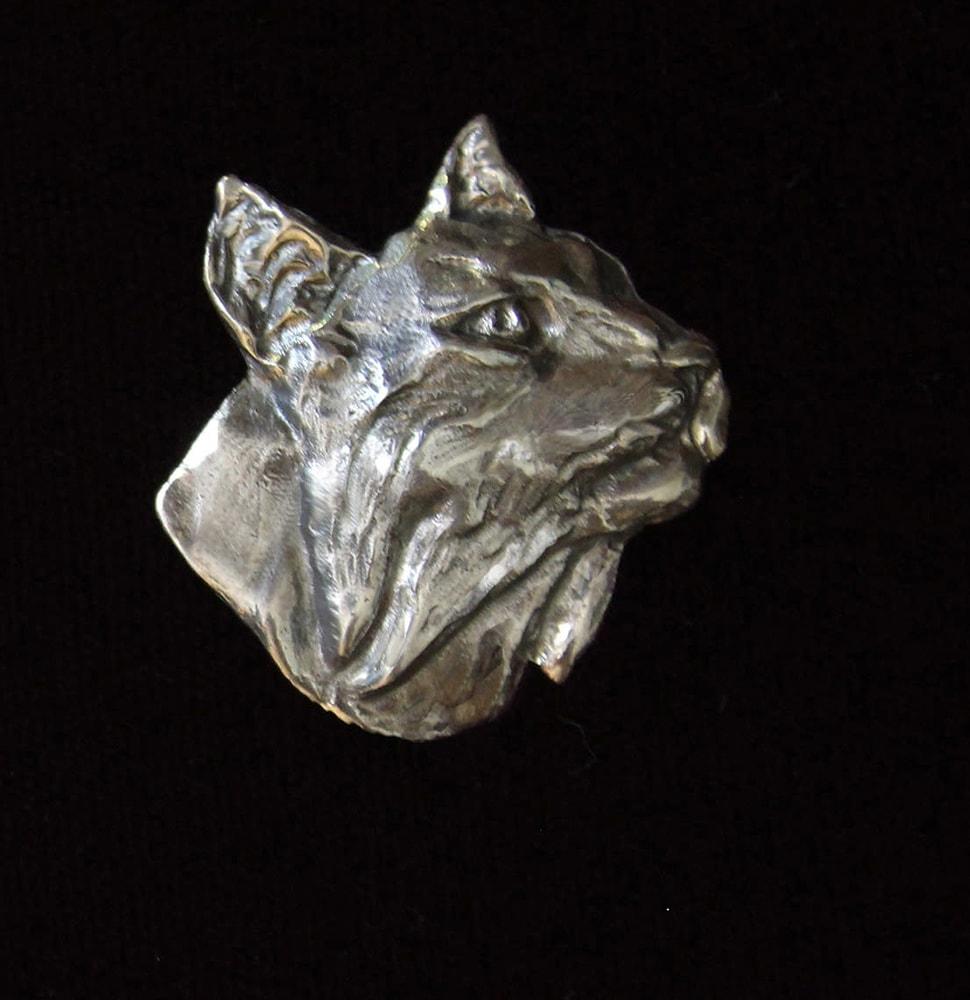 IMG 1592  Bobcat