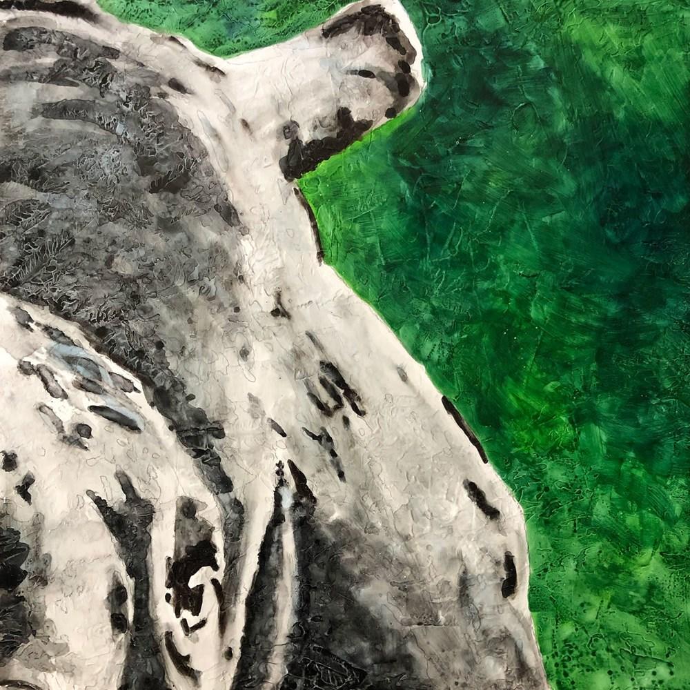 Rhino03