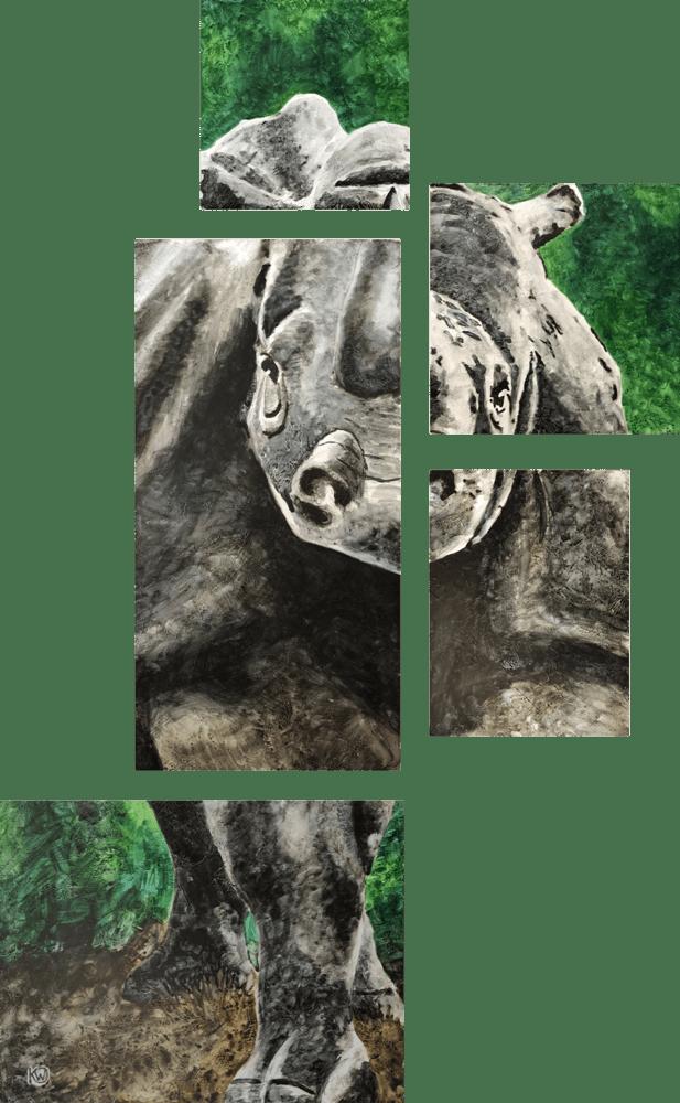 Rhino Room01