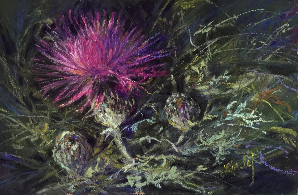17G16 A Thistle in Time 4x6 pastel Lindy C Severns