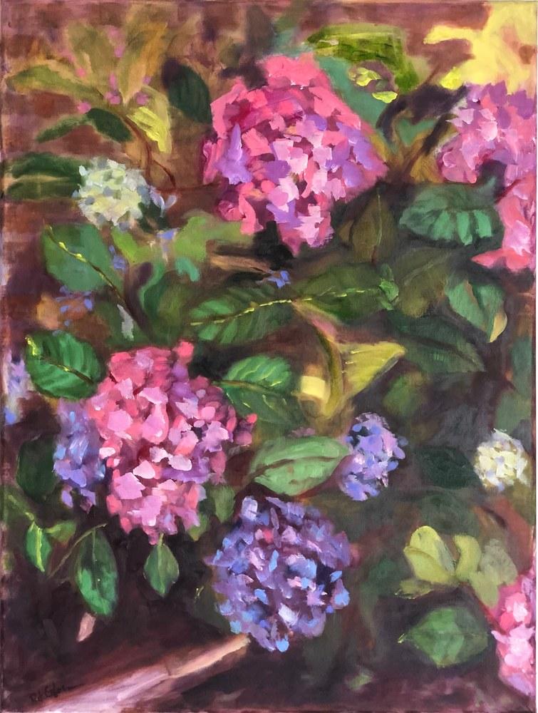 pink blue hydrangeas