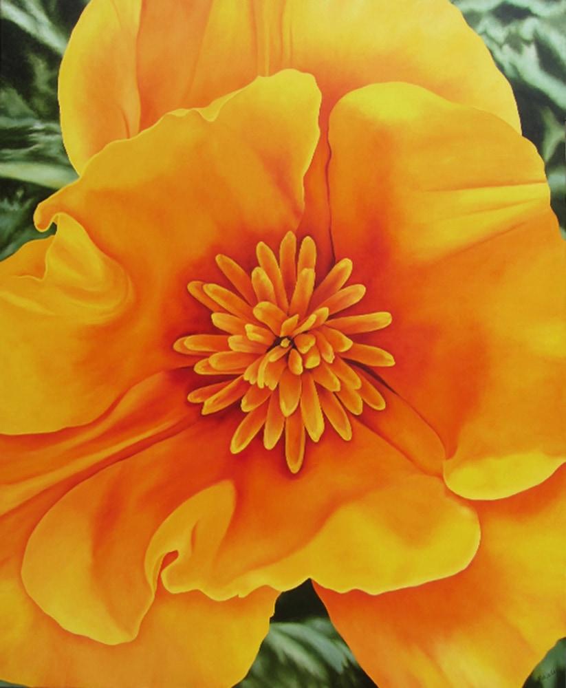 Happy California Poppy 66hx54w oil 72dpi 1920pxH