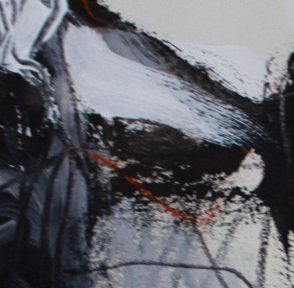 sv BlackandWhite untitled005 a p 12x9 detail IMG 3478