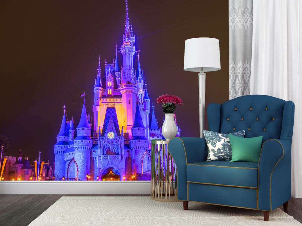 Cinderella's Castle at Night 1