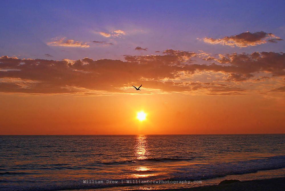 Beach Sunset sm