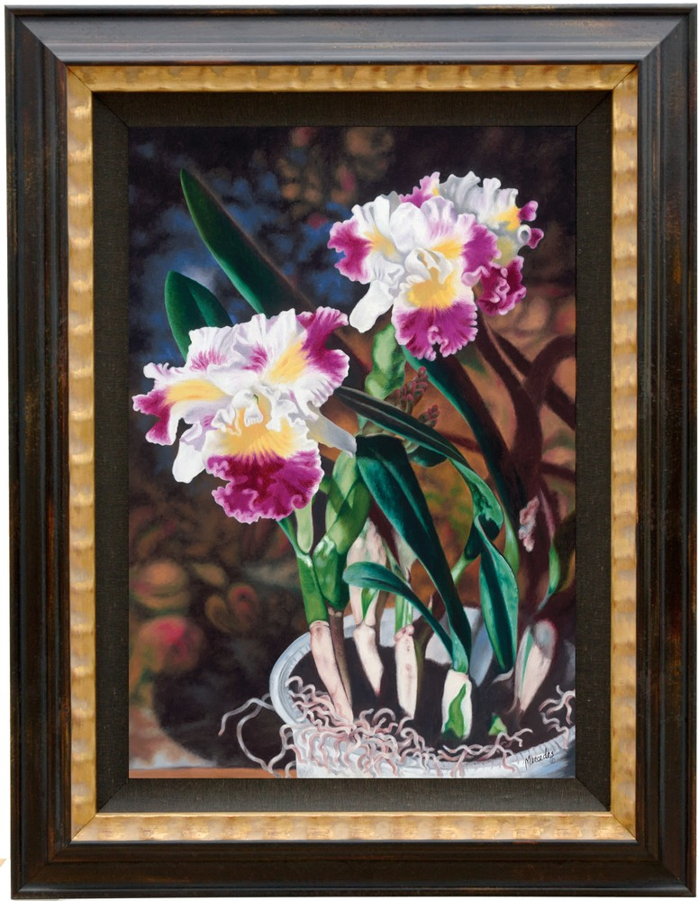 Potted Orchids framed