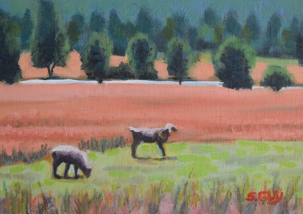 Upstate Pasture