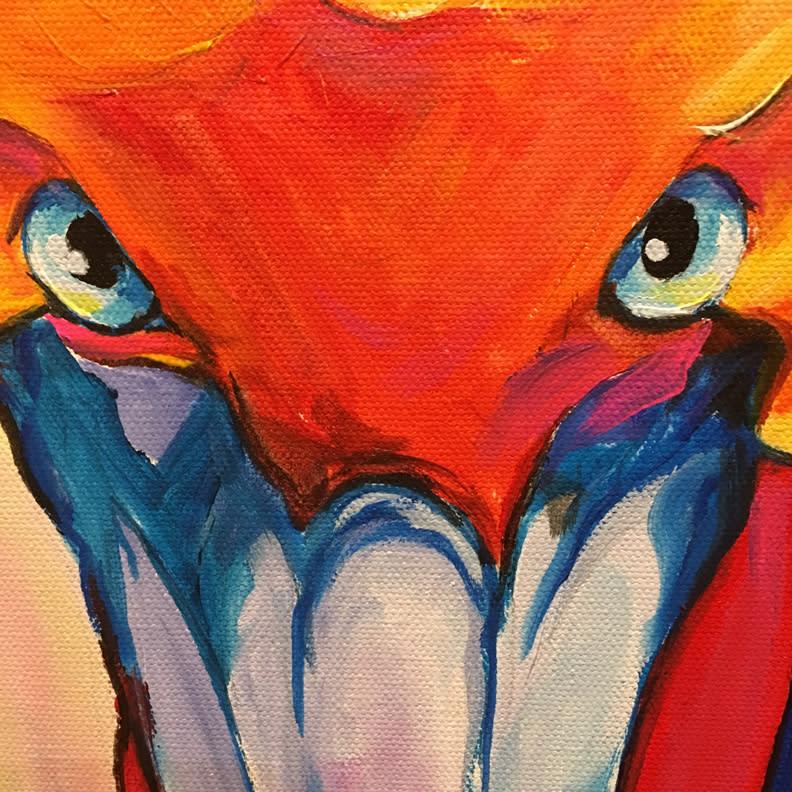 pelican1 close opt