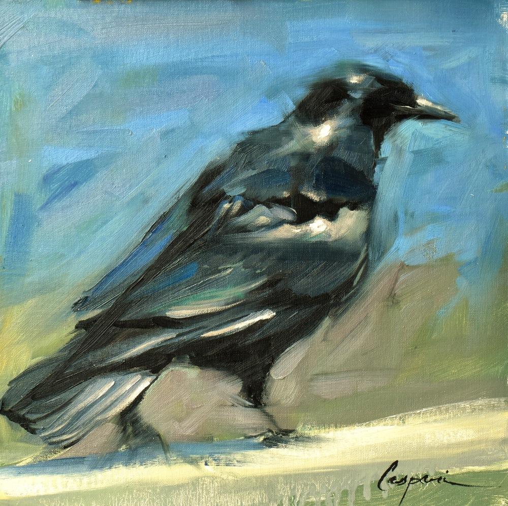 Crow, 12x12, Oil, 2020