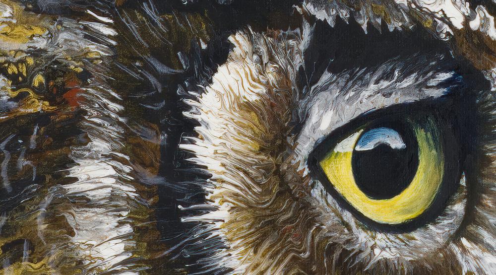Owl Detail 1