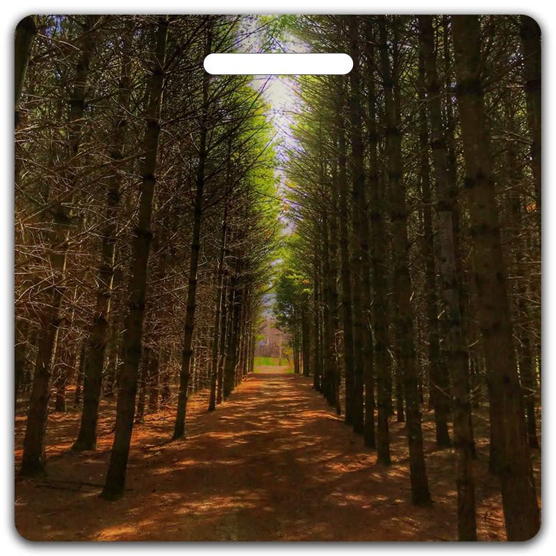 Pine Path Bag Tag